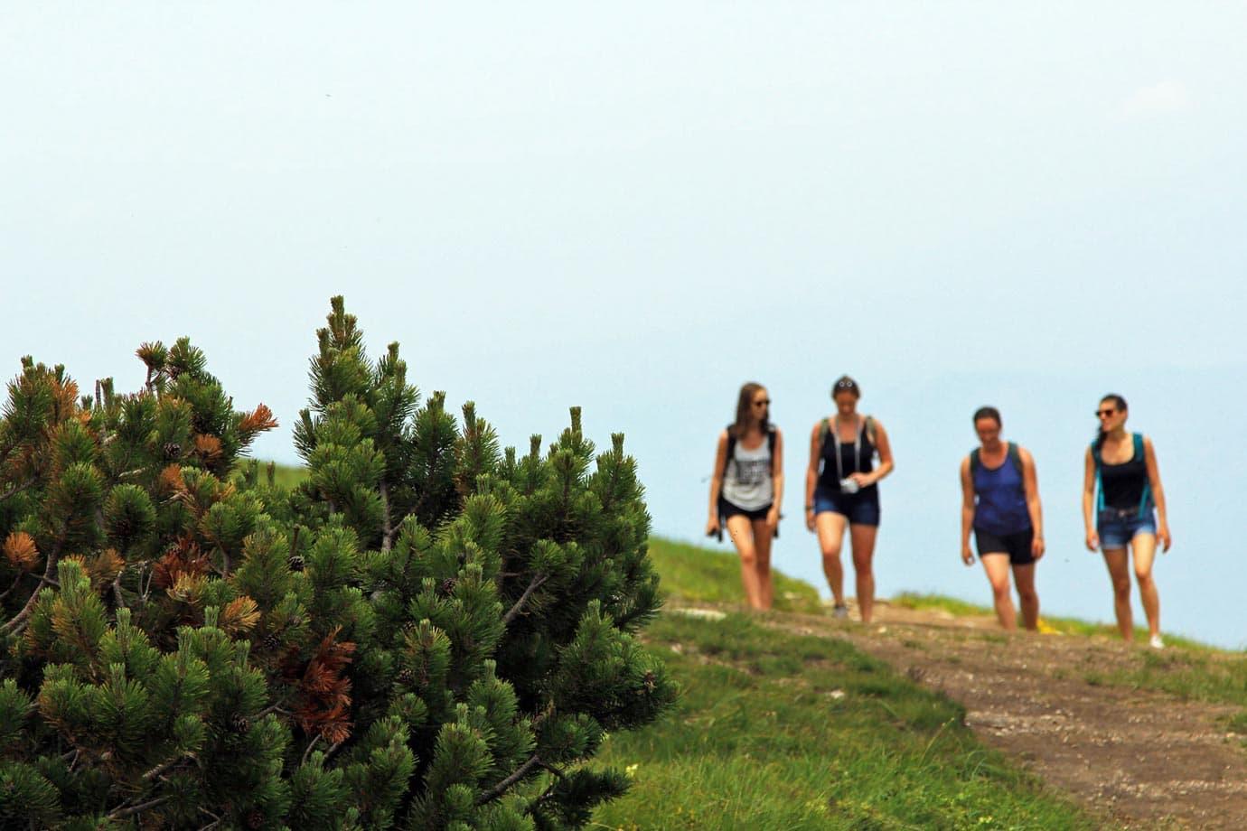hiking in bulgaria rila mountains