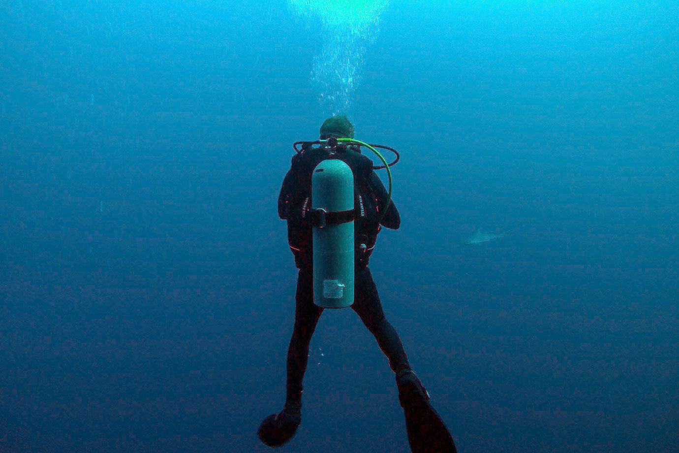 Diving enthusiasts flock to the Blue Hole