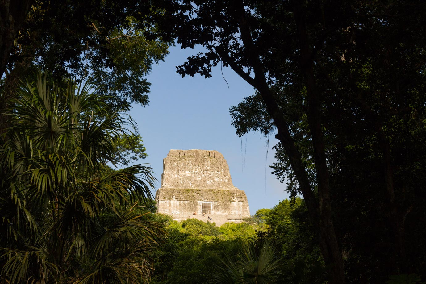 In 1979, Tikal National Park was declared a UNESCO World Heritage site, and walking around it is extremely easy to understand why
