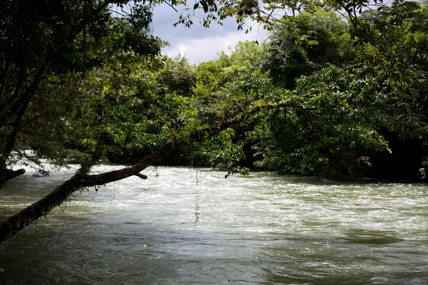The rushing river in Lanquin