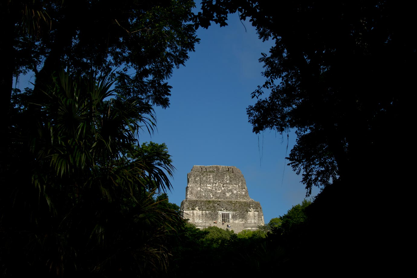 Tikal through the Trees - ©Brian Ceci