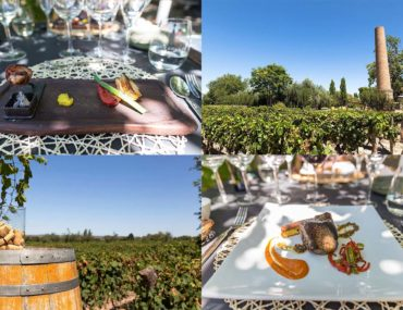 Review: Bodega Lagarde, Mendoza