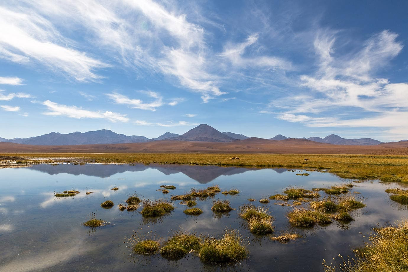 Lakes and mountains in the Atacama Desert