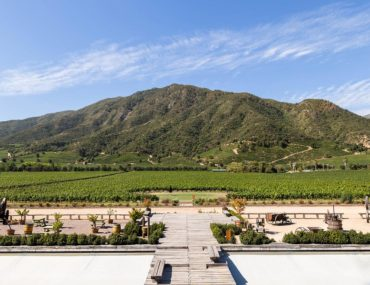 Wine Tasting in the Colchagua Valley, Chile