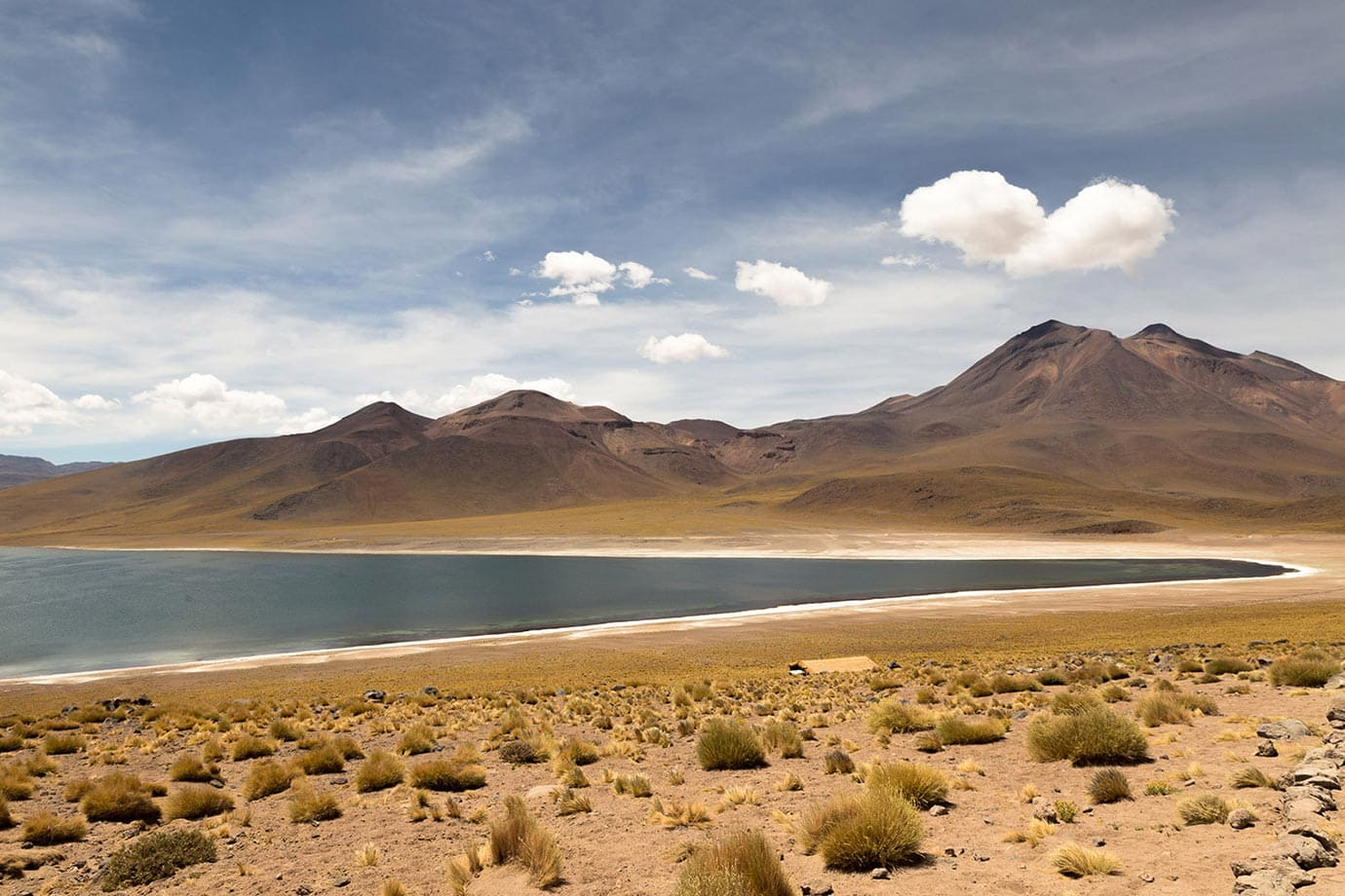View of Miscanti Lagoon, Chile