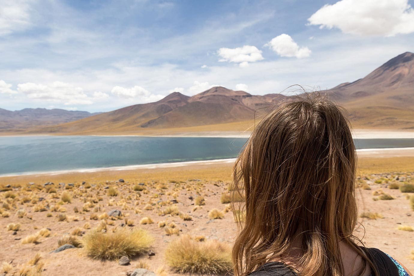 Looking at Miscanti Lagoon, Chile