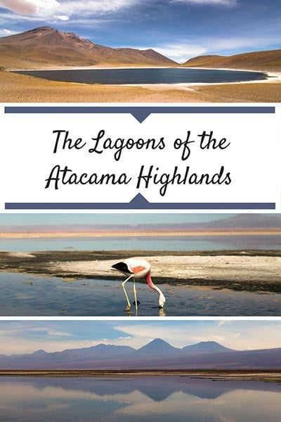 Tour of the Atacama Desert