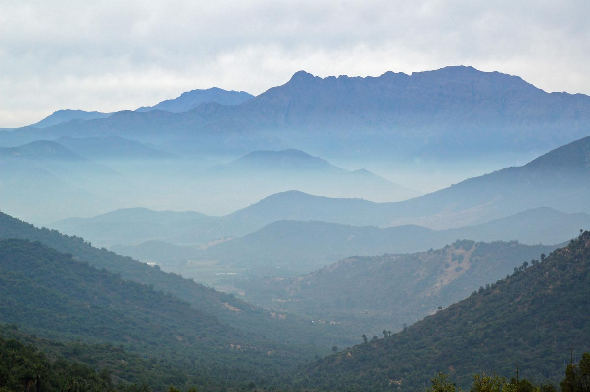 la campana national park chile