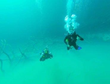 Diving Cenote Angelita