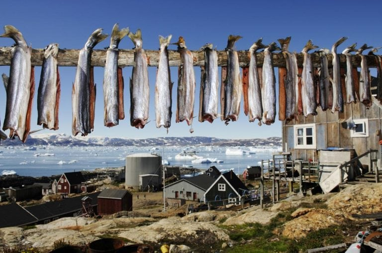 food in greenland