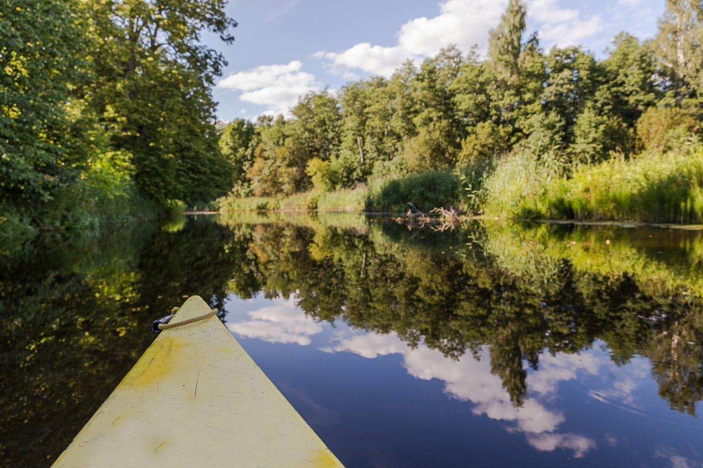 Kayaking Soomaa National Park, Estonia