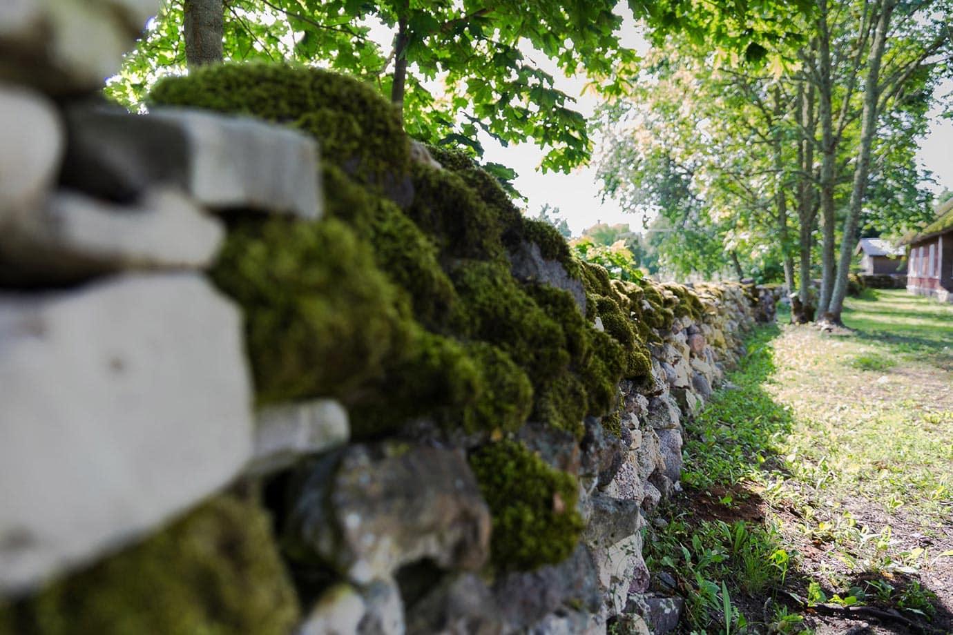 Ancient wall in Estonia