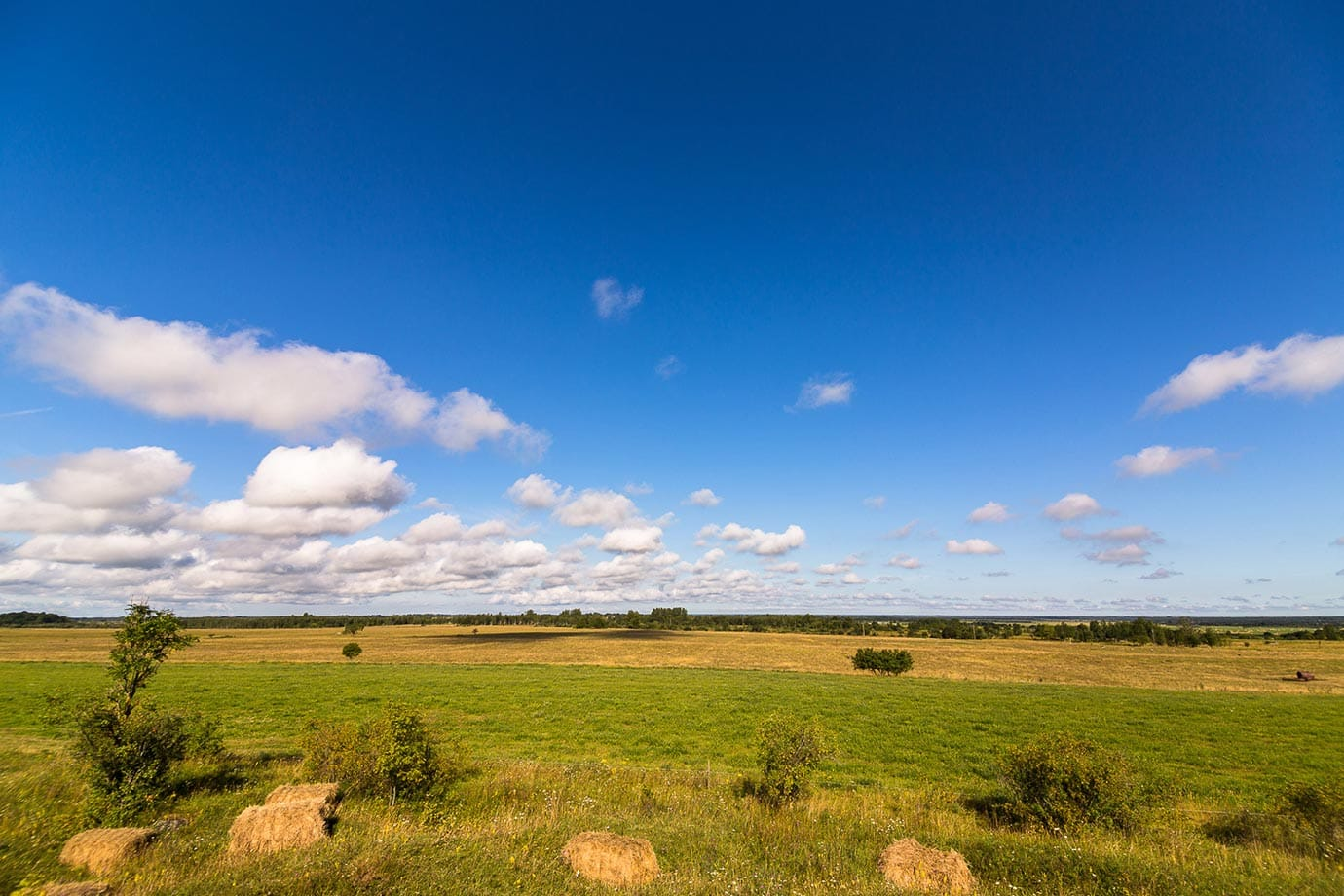 Countryside in Estonia