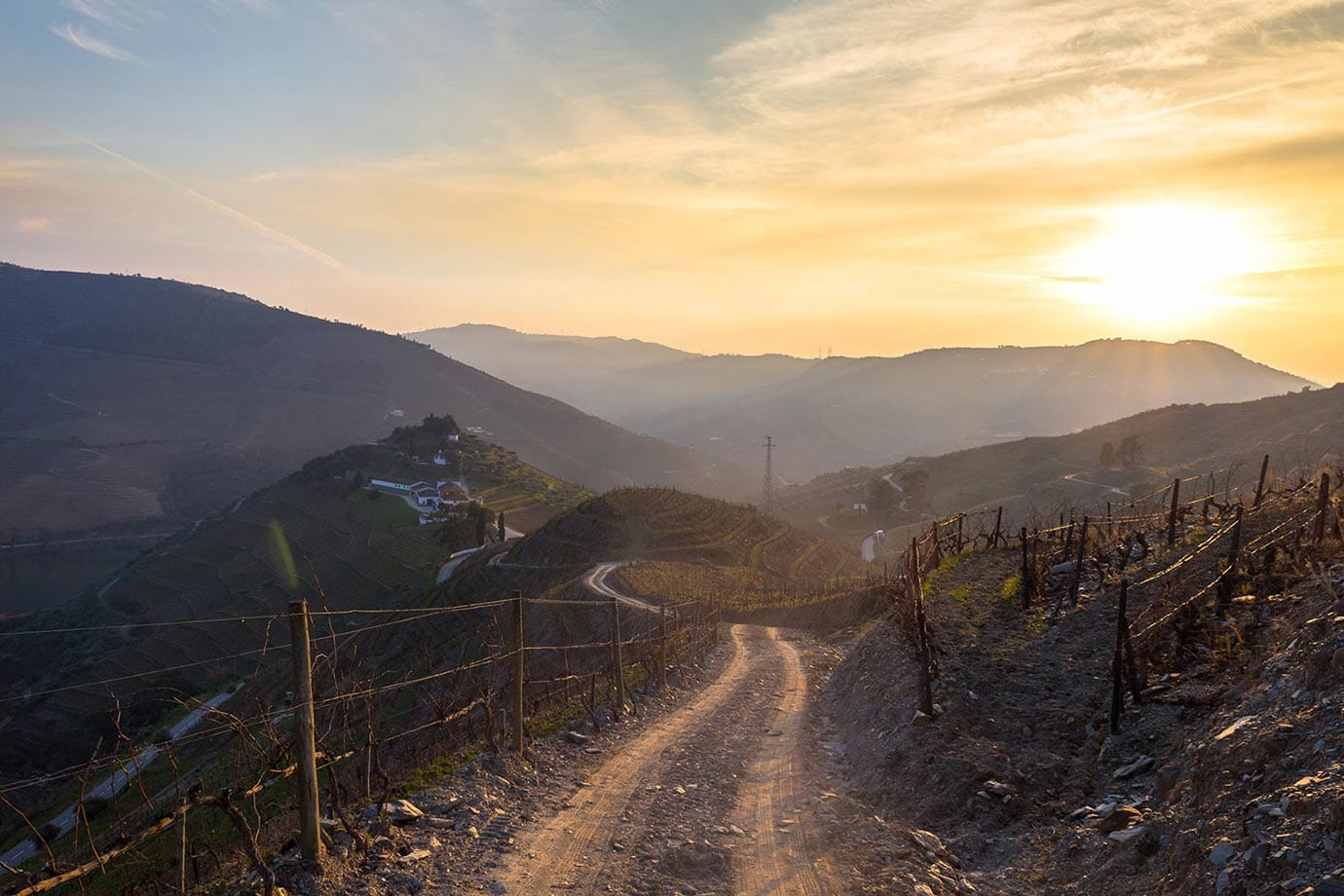 Quinta do Crasto vineyard