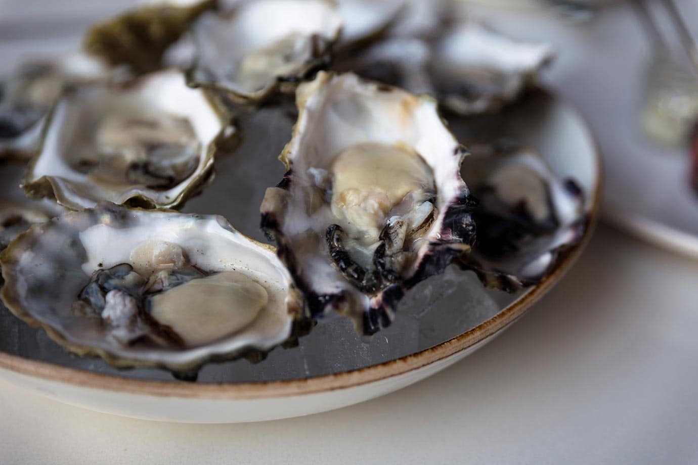 Fresh oysters at the Fairmont Waterfront