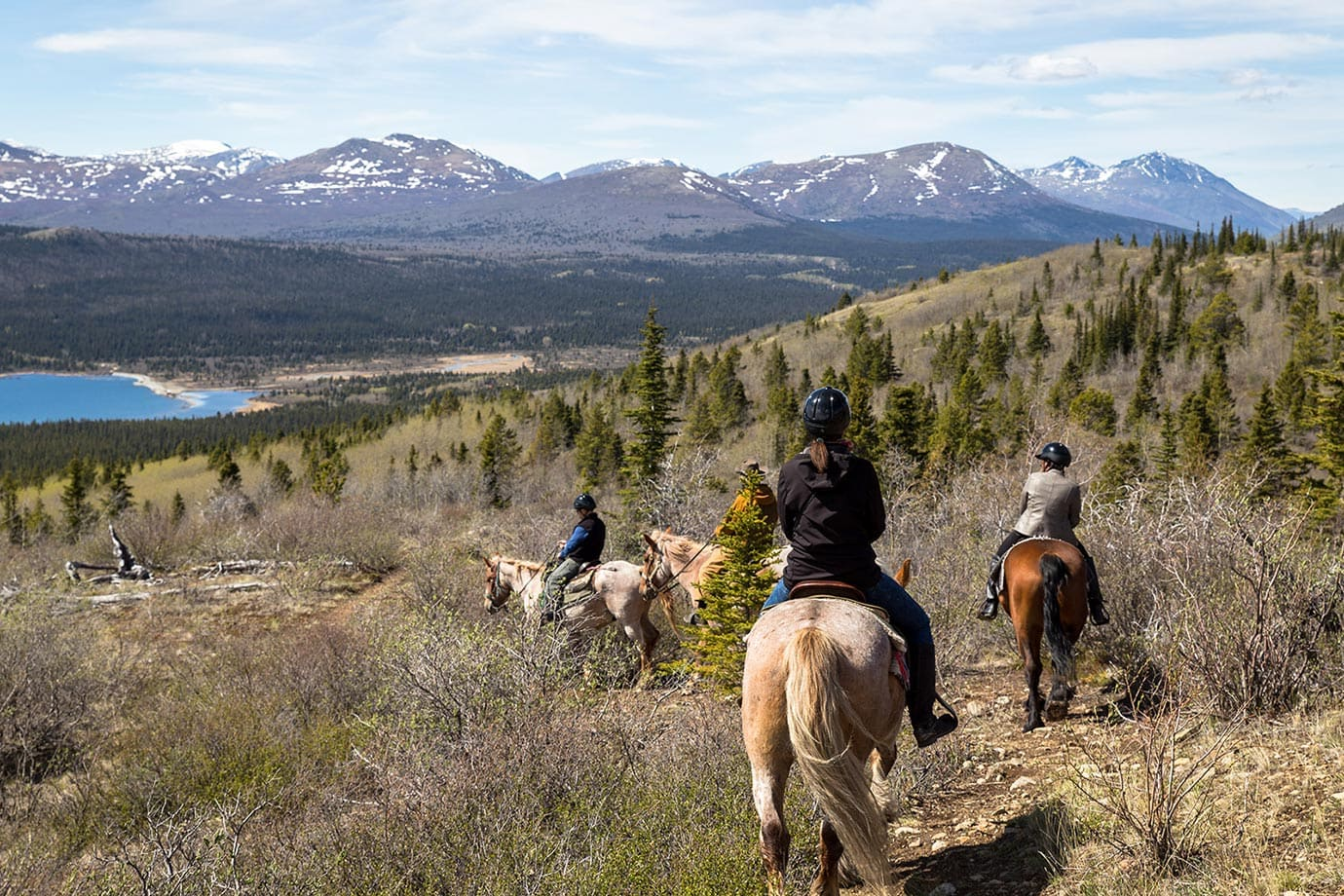 Horse riding in Canada