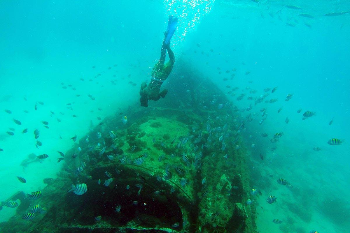 snorkelling in barbados