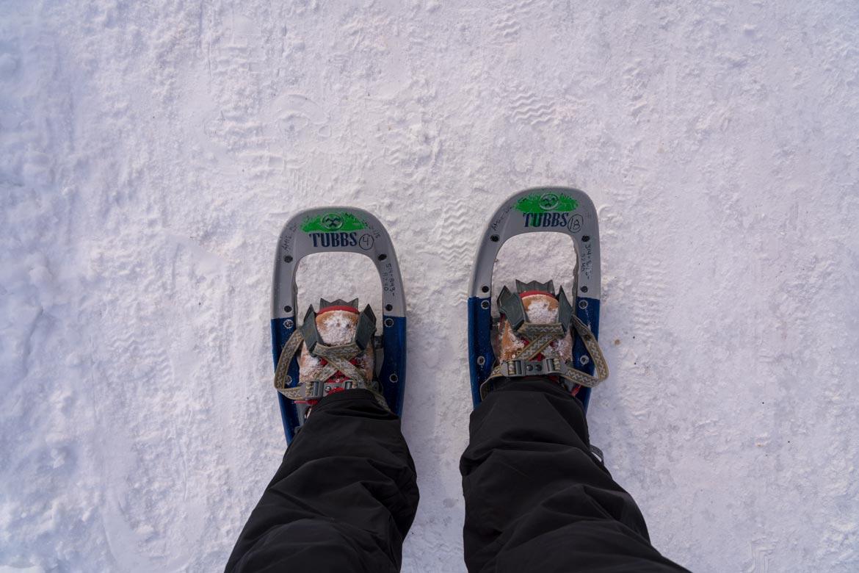 hiking mount royal in winter