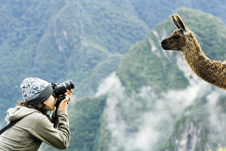 best blogger camera