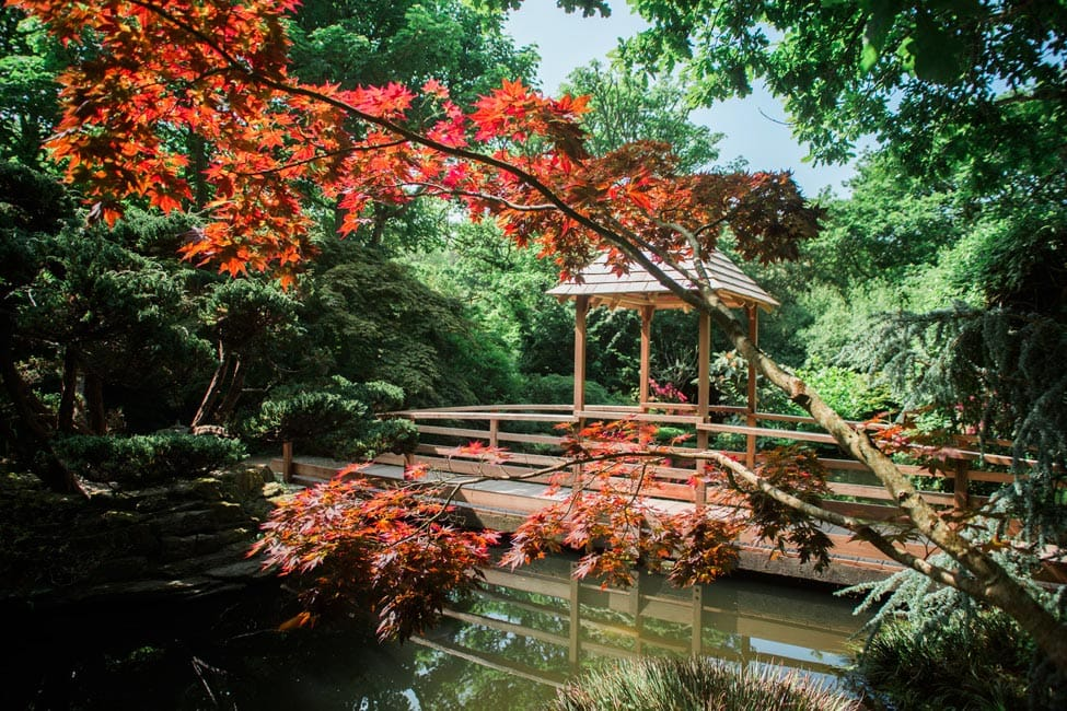 japanese gardens newquay attractions