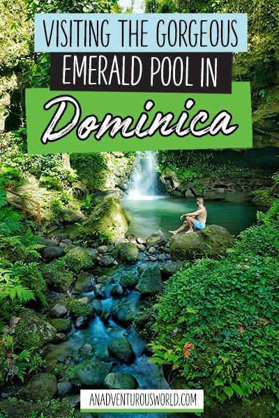 Visiting the Gorgeous Emerald Pool in Dominica