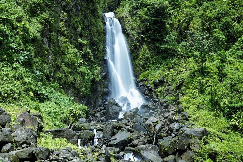 trafalgar falls dominica