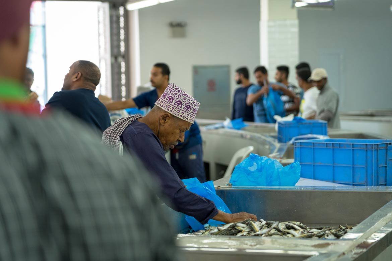 fish market muscat