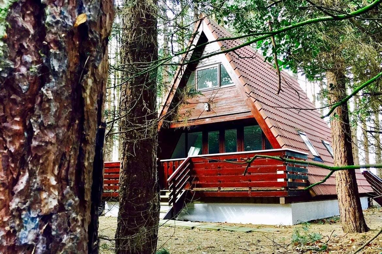forest lodge norfolk