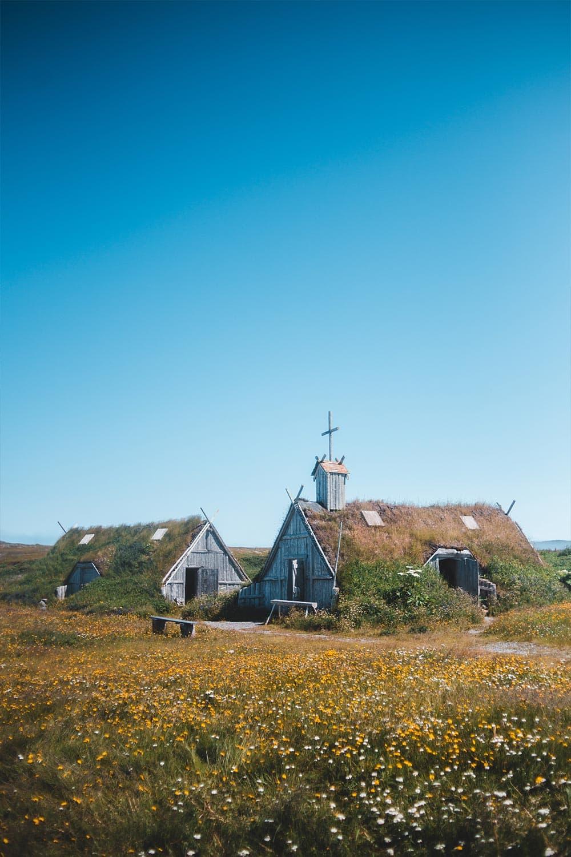 l'Anse aux meadows national historic site