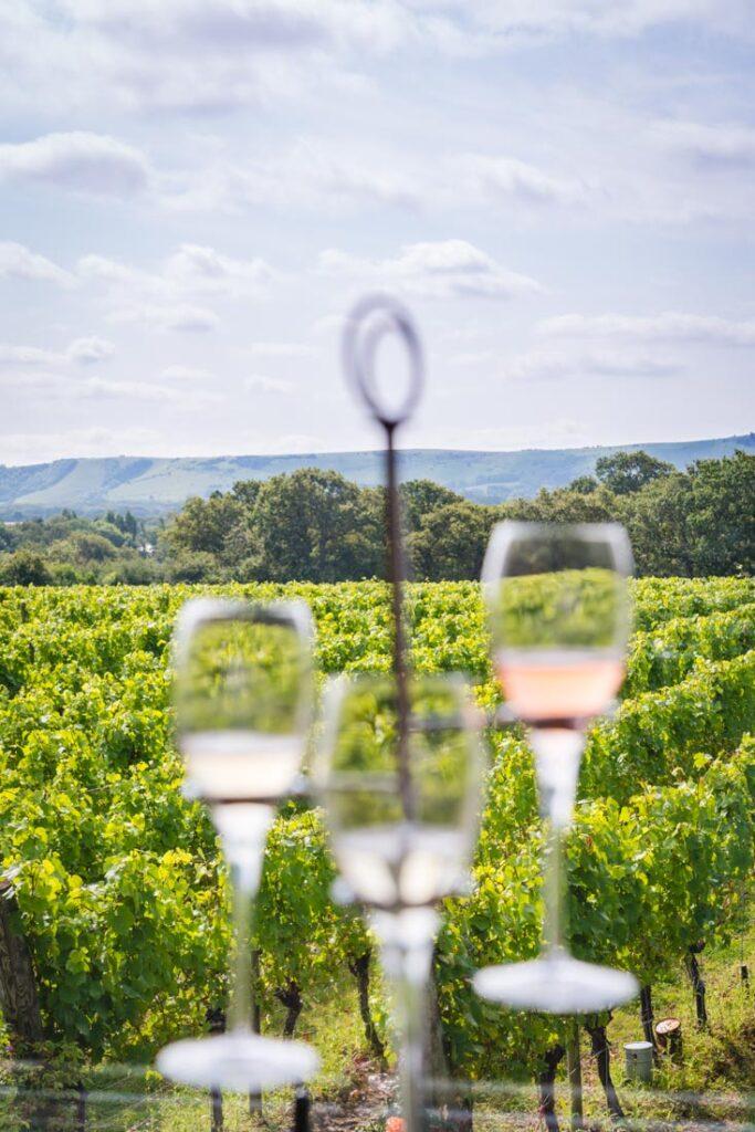 ridgeview wine