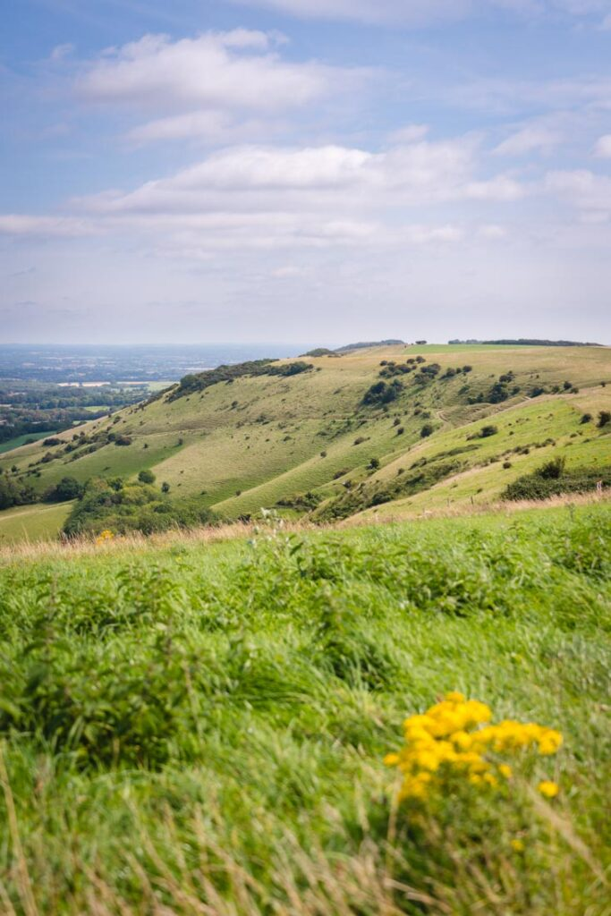 where to go in east sussex